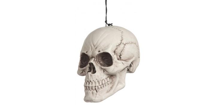 Cráneo plástico colgado