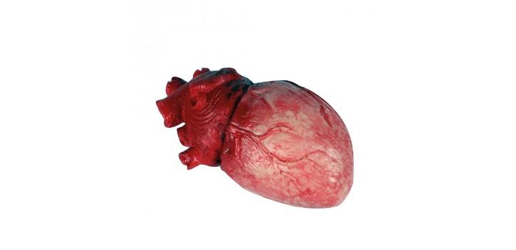 Corazón látex