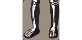 Añadir Pies de Esqueleto Eco